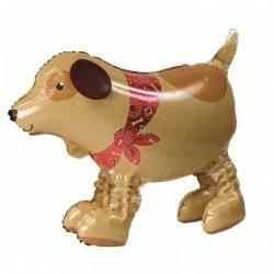Wandelende Ballon Hond Anagram