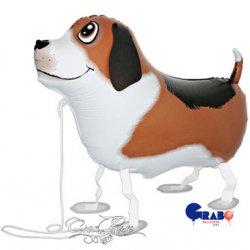 Wandelende Ballon Bobby de Hond